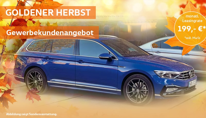 Passat Variant Business 2,0 l TDI SCR 110 kW (150 PS) 6-Gang